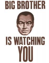 Storebror ser dig
