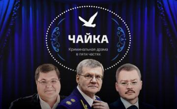 Familjen Tjajka på Navalnyjs sajt.